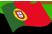 bandera_pt